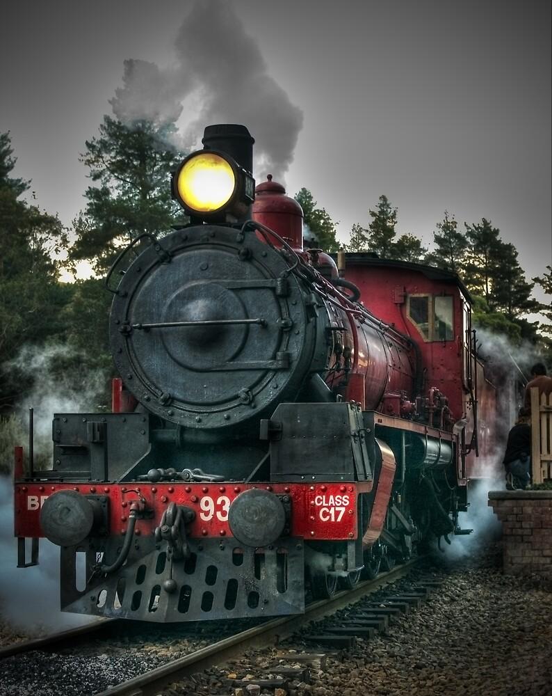 Engine No. 934, Zig Zag Railway by Clayton Haynes