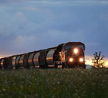 Iron Horse Sunset by Geoffrey