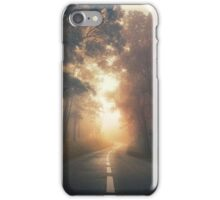 Into the Warmth iPhone Case/Skin