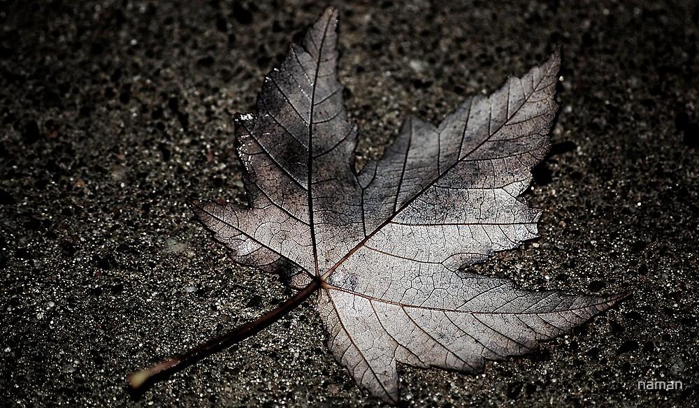 Fall(en) leafs by naman