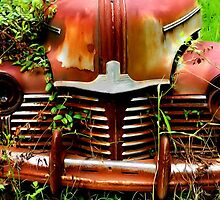 Rust In Peace by Michael Coots