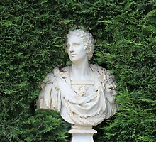 Ancient Marble bust by mrivserg
