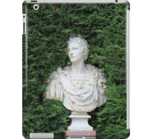 Ancient Marble bust iPad Case/Skin