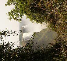 Victoria Falls Zimbabwe by Sandra Kent