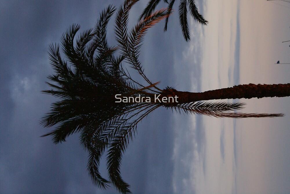 Untitled by Sandra Kent