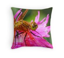 Dragonfly, Orange on Electric Pink Throw Pillow