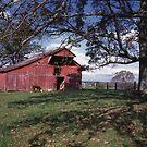 Red Barn by © Joe  Beasley IPA