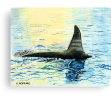 Killer Whale Canvas Print
