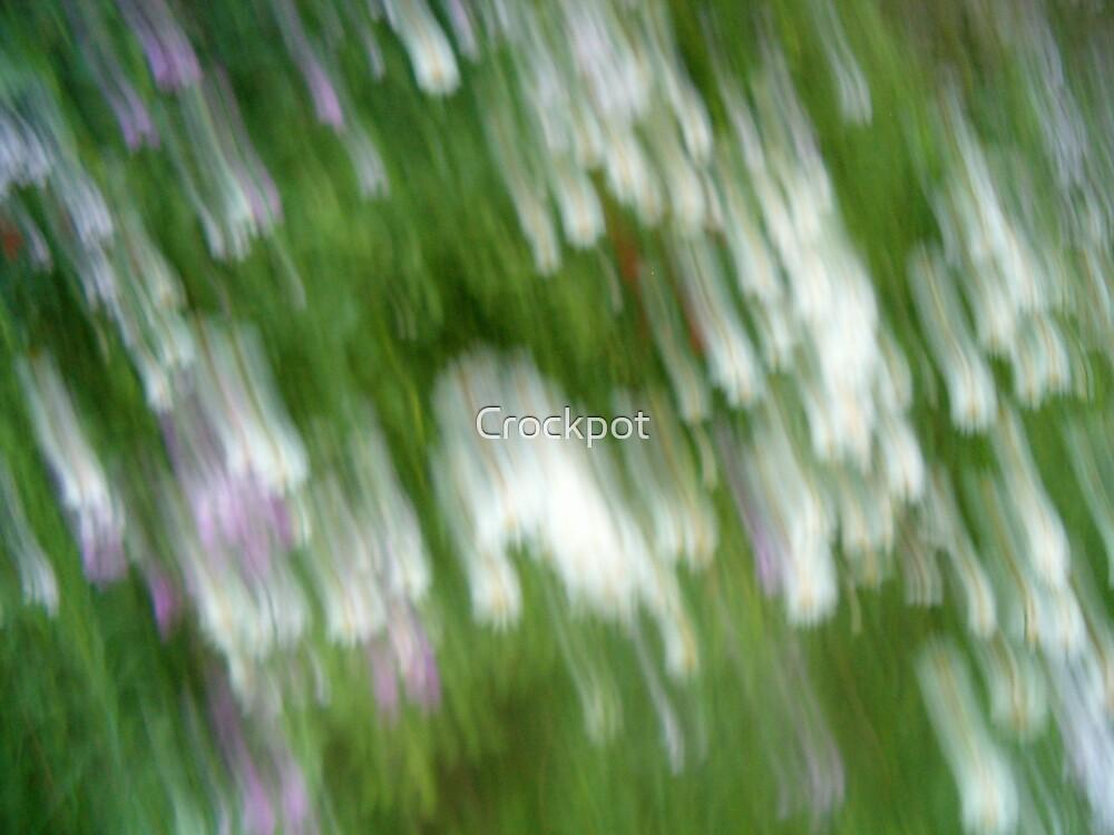 Flower Shower by Crockpot