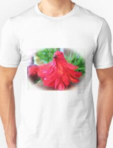 Red Feathers T-Shirt