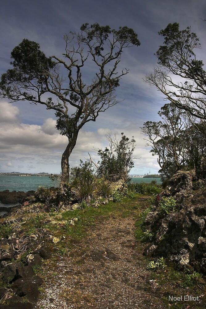 Auckland - NZ by Noel Elliot