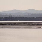 Humboldt Bay by Adam Mattel