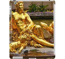 SCULPTURE IN FOUNTAIN LINDERHOF PALACE iPad Case/Skin