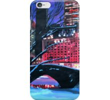 New York City - Central Park Winter iPhone Case/Skin