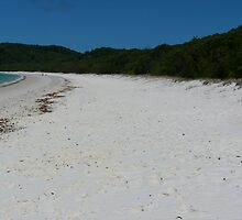 Whitehaven Beach Whitsunday Island by lizey