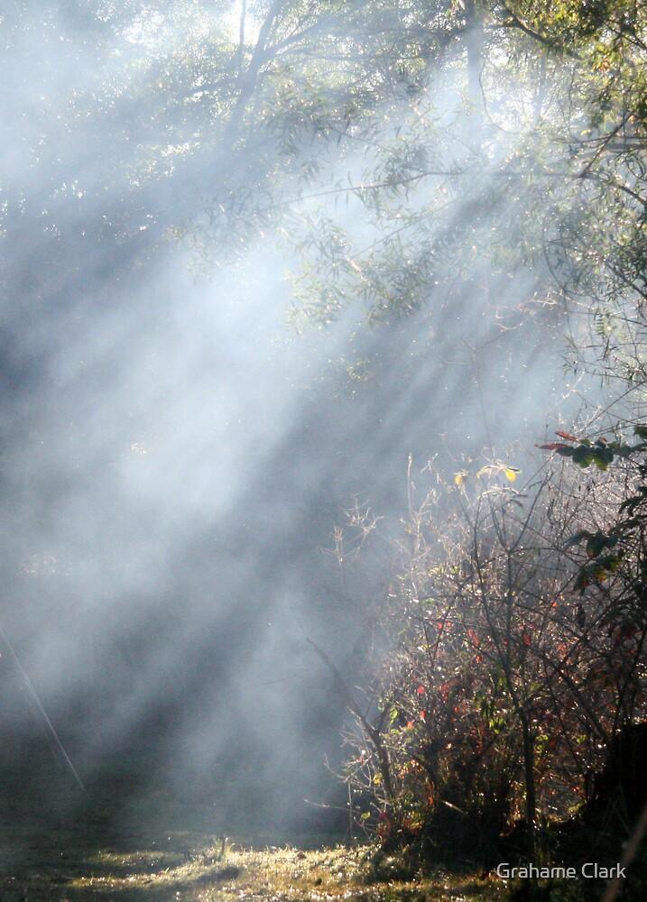 Misty mornings by Grahame Clark