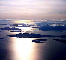 Coastal aerial vue, BC Canada  by Daniela Weil
