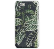 Tropical dream iPhone Case/Skin