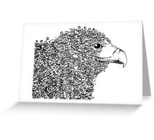 Philippine Eagle Greeting Card