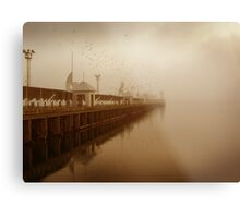 the birds and the pier Metal Print