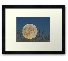 Behind - Moon & grass collage Framed Print