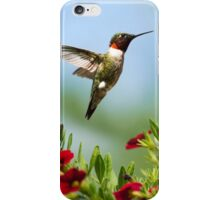 Hummingbird Frolic with Flowers iPhone Case/Skin