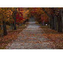 Autumn Photographic Print