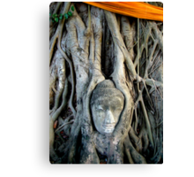 Buddha Face In Tree Canvas Print