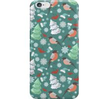 Winter birds blue pattern iPhone Case/Skin