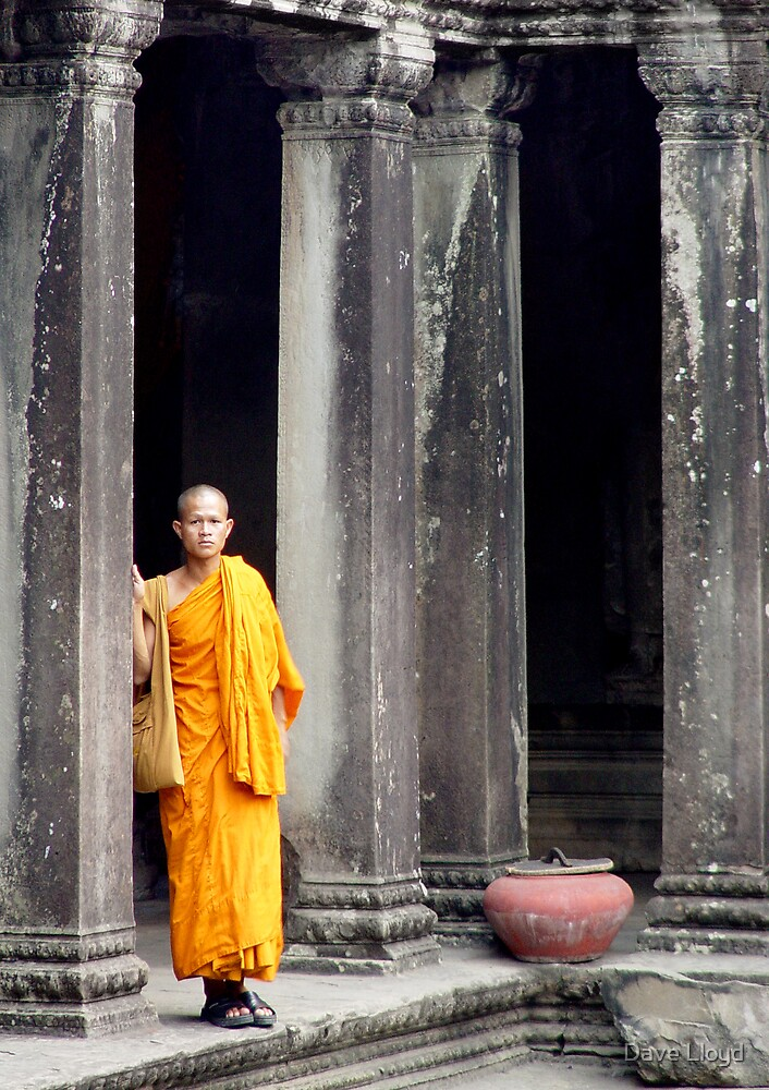 Monk At Angkor by Dave Lloyd