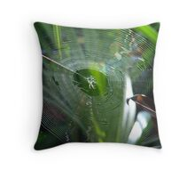 That's a spider-web, man Throw Pillow