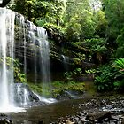 Russell Falls in Tasmania by STEPHEN GEORGIOU