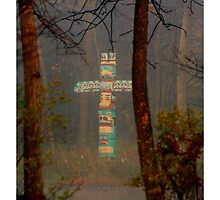 Totem In The Mist by Madeline M  Allen