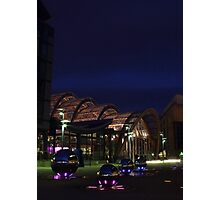 Lights of the Winter Garden Photographic Print