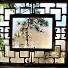 Asian Garden Window by cherie hanson