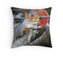 Oh Please,  Let There Be Peanuts. Throw Pillow
