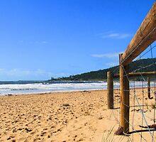 Sandy Shore by Coralie Alison