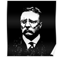 THEODORE ROOSEVELT-26TH PRESIDENT  Poster