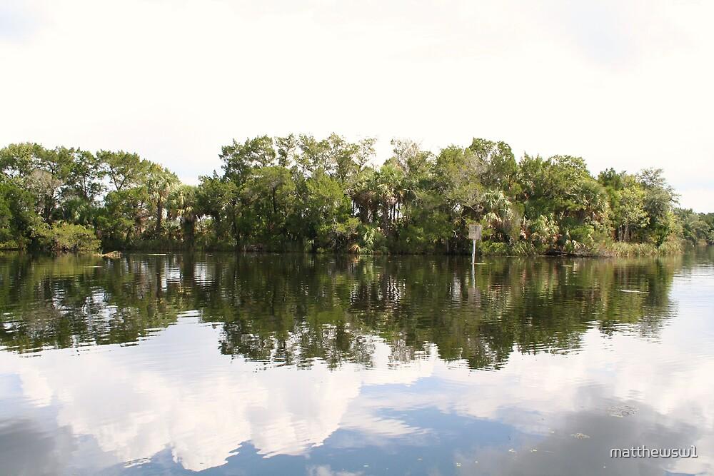 Calm Day on The Homosassa River, FL  by matthewsw1