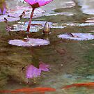 reflections by paula whatley