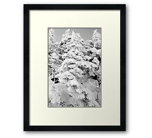At The Top / B&W Framed Print
