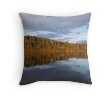 Awesome Reflections Throw Pillow