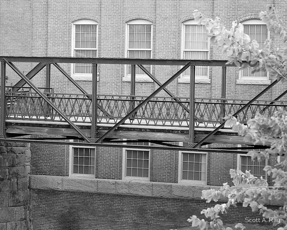 Bridge by Scott A. Ray
