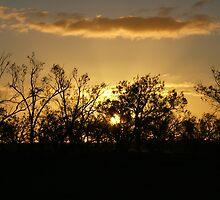 Sunset far west NSW Australia by WiseArt