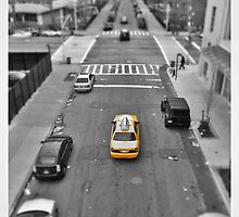 From the High Line by Sarah-jane Monro