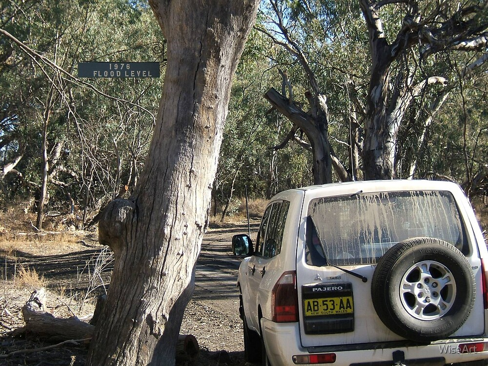 Flood Height Kincheca NP by WiseArt