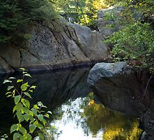 Childhood Swimming Hole by Dan Cahill
