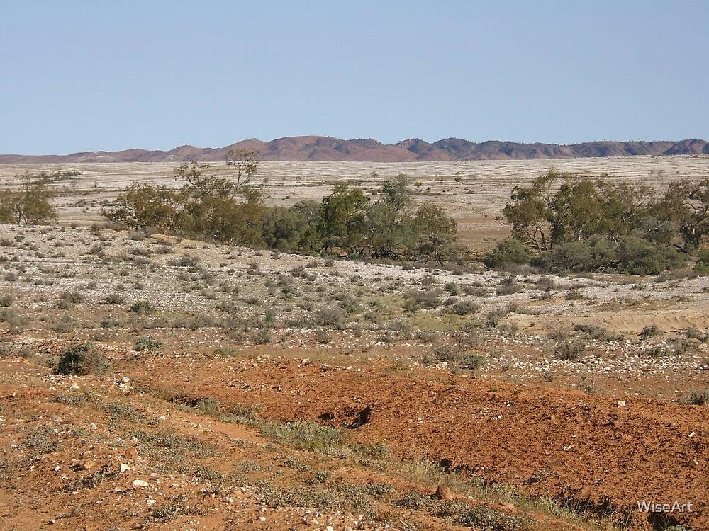 Milparinka NSW Australia by WiseArt