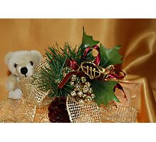 Holiday Gold Photographic Print