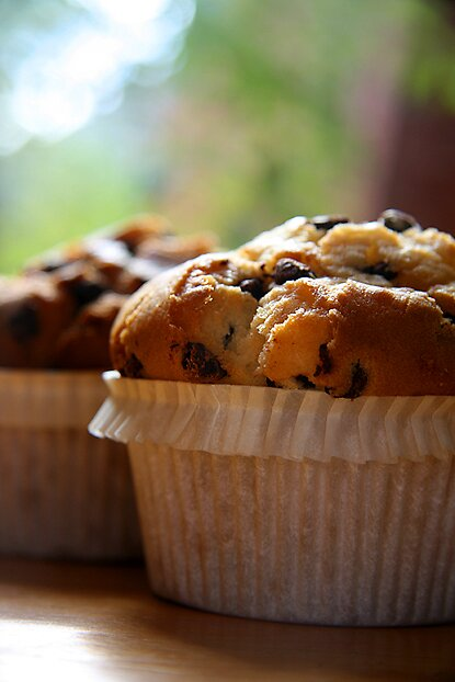 Muffin by Bryant Evans
